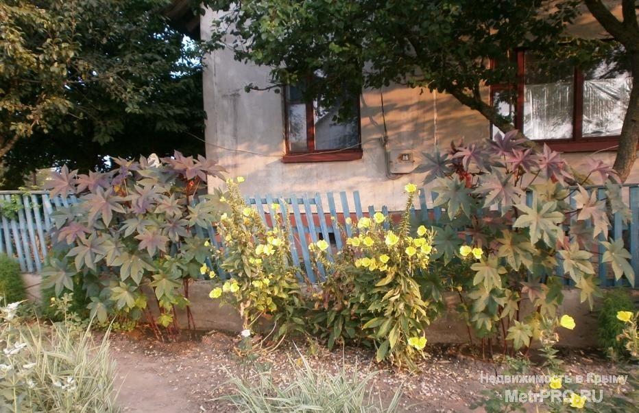 Порно ление красногвардейск крым вк фото 77363 фотография